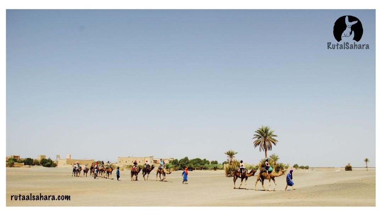 travel the desert